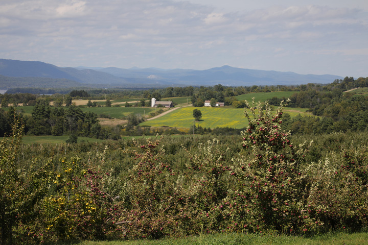 Champlain Orchards upgrades inventory management system