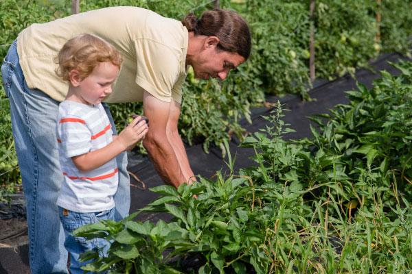Producer Spotlight: Basin Farm