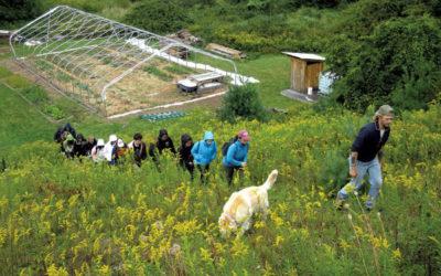 Jon Turner Helps Fellow Vets at Wild Roots Farm